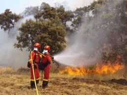 La UME apagando un incendio
